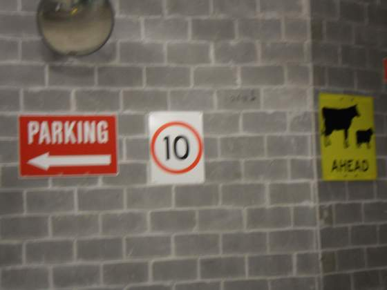 Cow Warnings in parking structure   Sydney