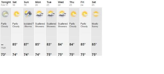 Weather Forecast for the week